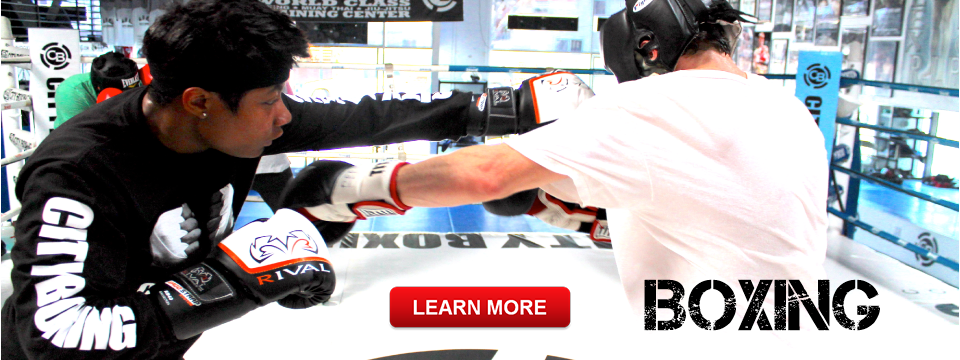 Boxing, Muay Thai and Jiu Jitsu Classes san Diego